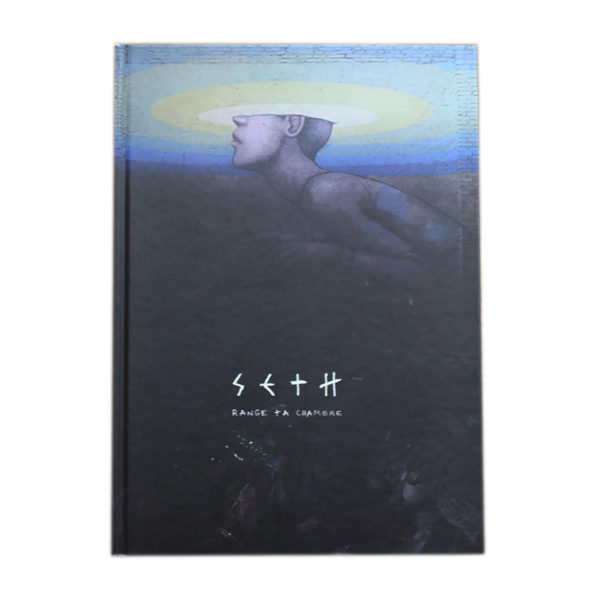 livre art seth